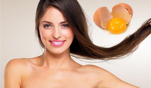 Маски для волос из яиц: рецепты, отзывы